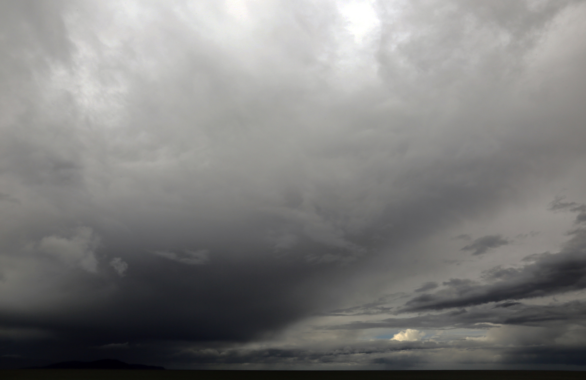 Stormy times Copyright Daniela Brozek